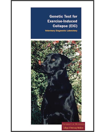 Texas-Trace-articles-Genetic-Test