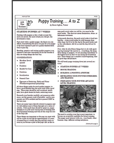 Texas-Trace-articles-puppy-training1