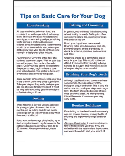 Texas-Trace-articles-tips-on-basic-care